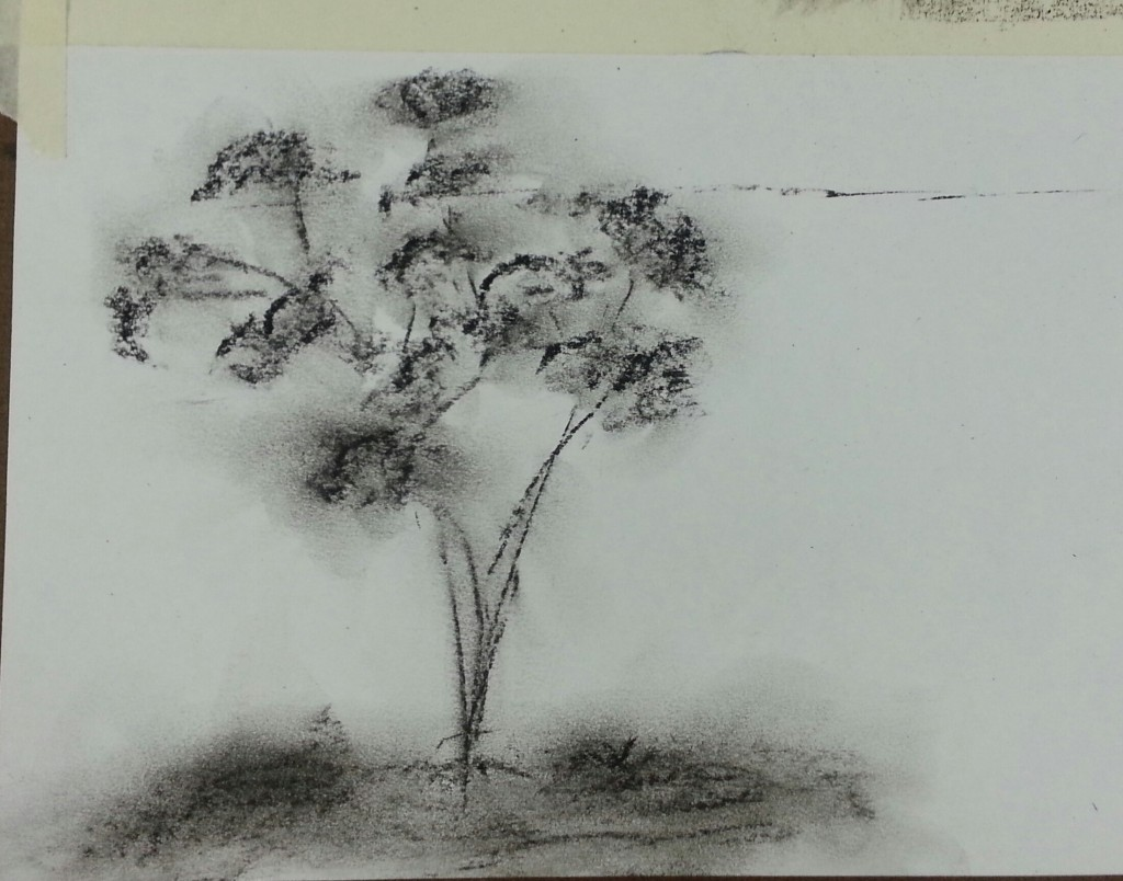 Charcoal Tree second Sketch