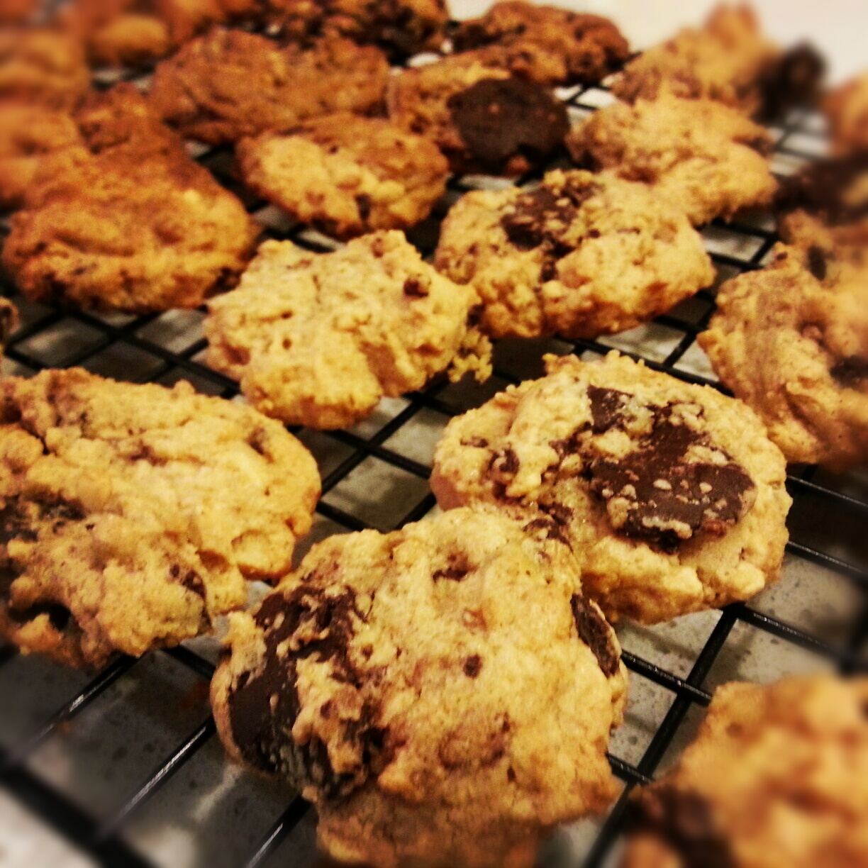 Peanut Butter Chocolate flourless Cookies